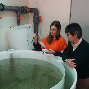 Two researchers in the krill aquarium