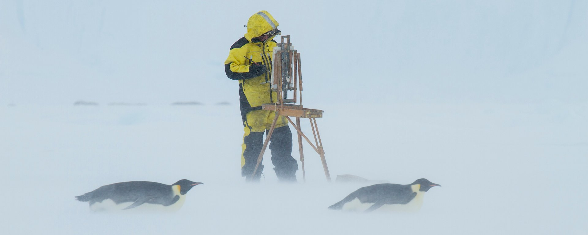 Artist standing at easel with two emperor penguins tobogganing